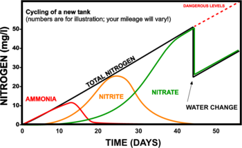 The Nitrogen Cycle The Free Freshwater And Saltwater